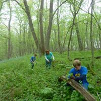 Spring Community Stewardship Day @ Burr Oak Valley Preserve | Roscoe | Illinois | United States